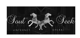 Soul Seek - Internet Opera